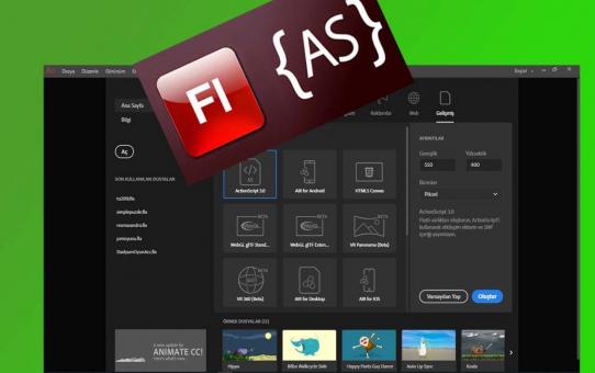 Adobe Animate MovieClip(root) erişimleri hakkında